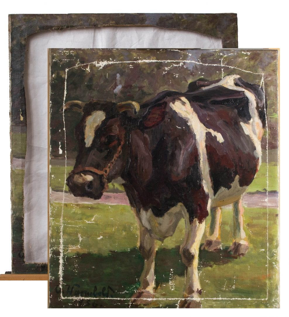 Painting, oil on canvas, Portrait of a Cow