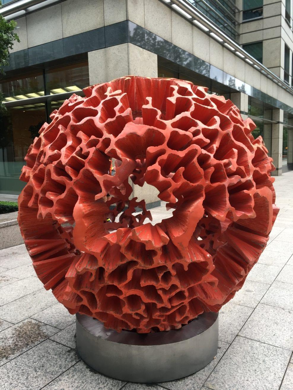 coquina coral